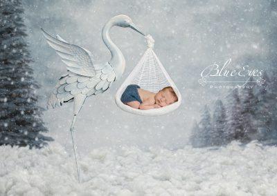 nouveau-né © BlueEyes Photography