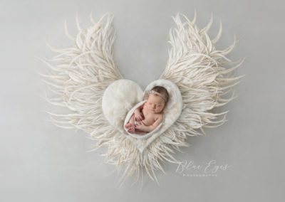 rose Heart wings white copie